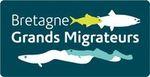 Logo Bretagne Grands Migrateurs