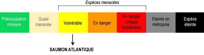 Classement UICN Saumon