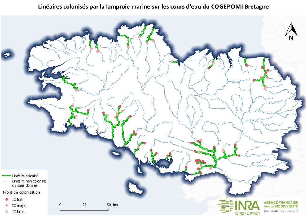 2018 AFB INRA Lineaire colonise LPM