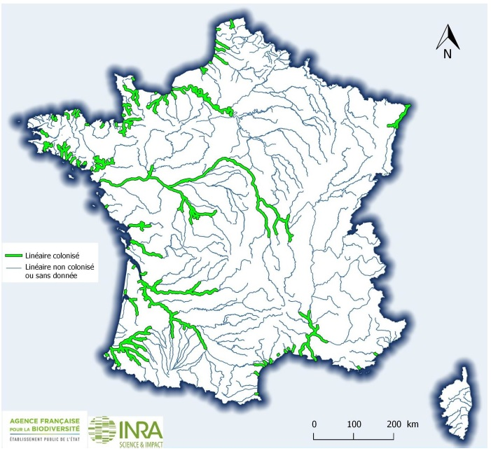 2018 AFB INRA Lineaire colonise LPM France